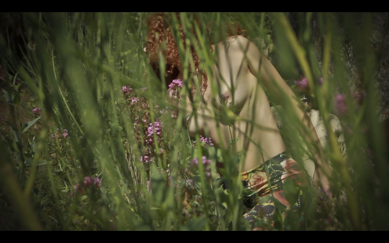 Spring - Flor